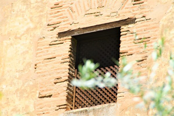 Celosia ventanas Alhambra Granada