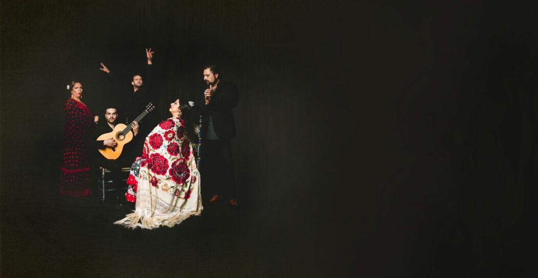 Casa Ana Flamenco Granada